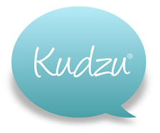 Sandy Springs Locksmith on Kudzu Best of 2012